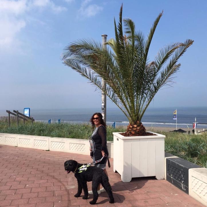 Carin en Hutch bij een palmboom aan de boulevard in Zandvoort
